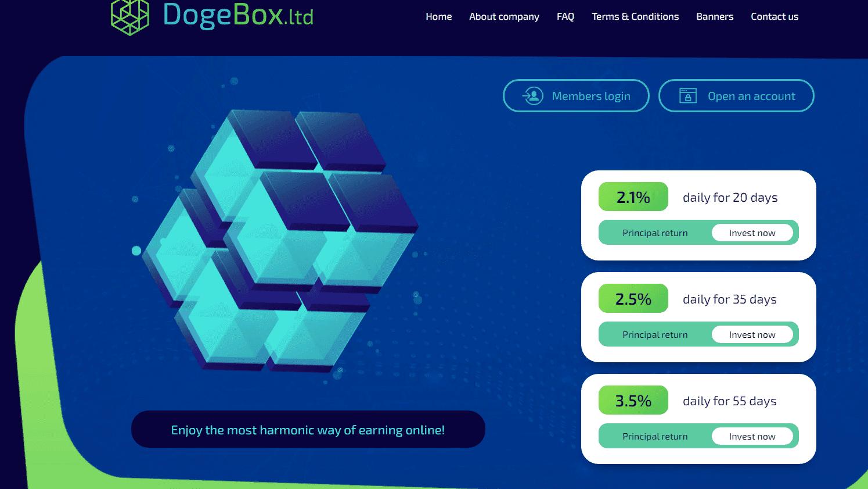 Dogebox