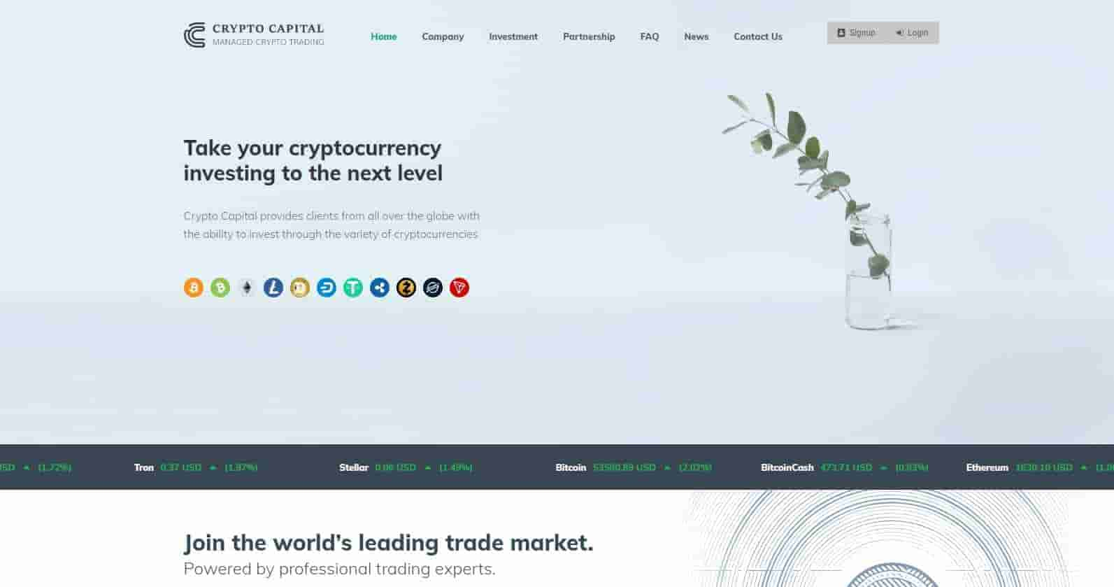 CryptoCapital