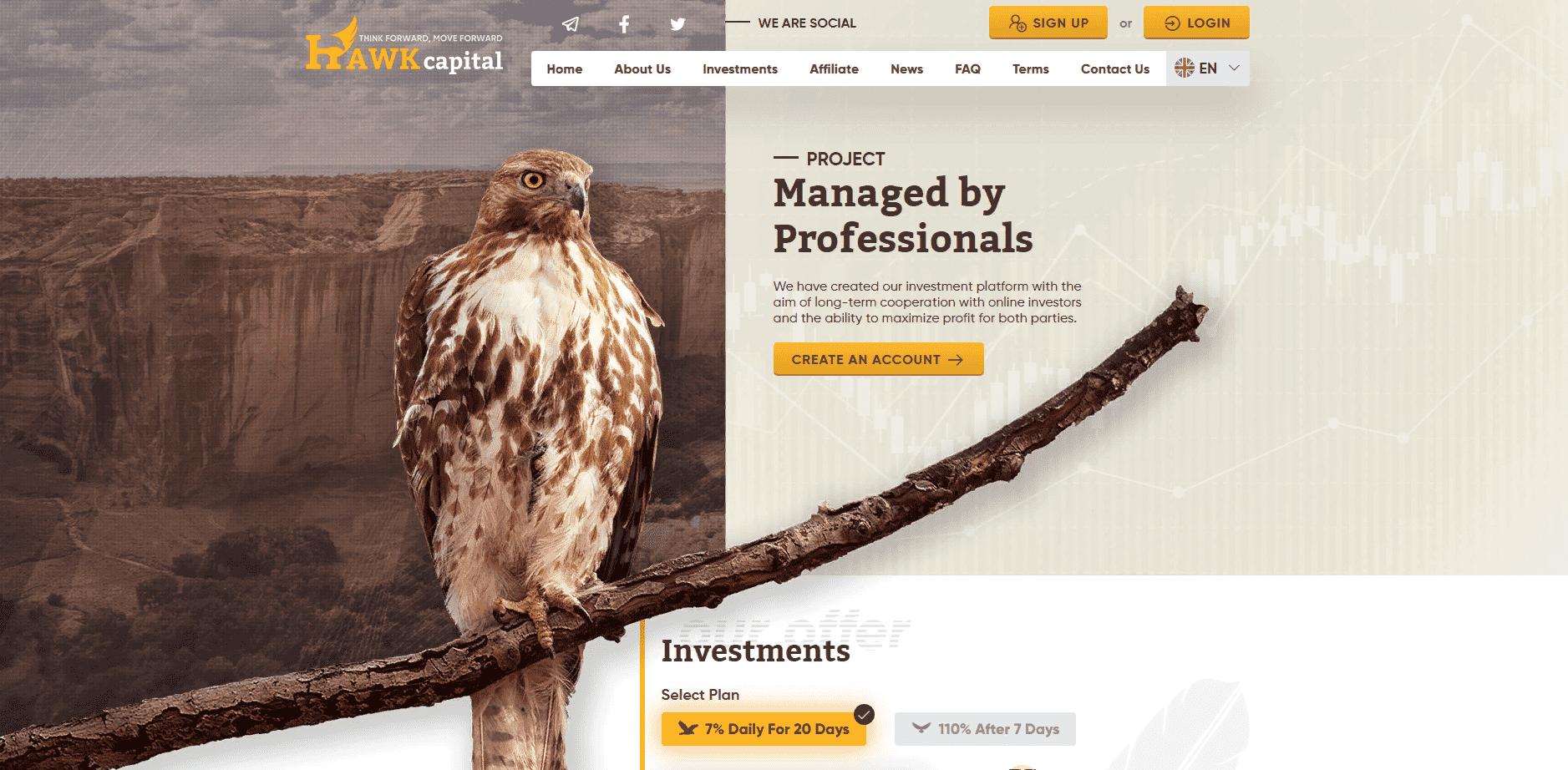 Hawk Capital